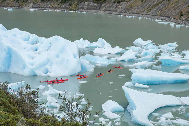 Icebergs near Grey Glacier